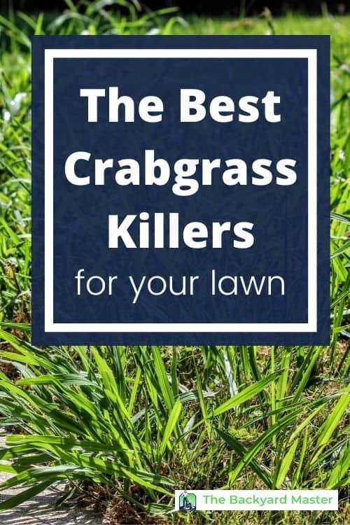 The 7 best crabgrass killers
