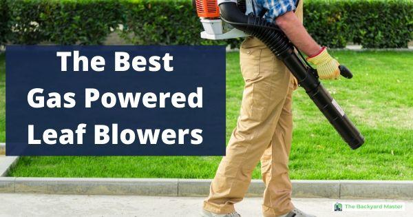 best gas powered leaf blowers