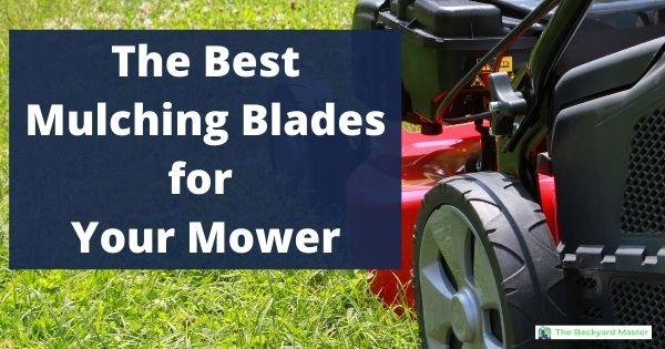 The best mulching blades