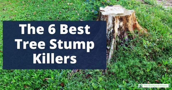 Best stump killer to remove tree stumps