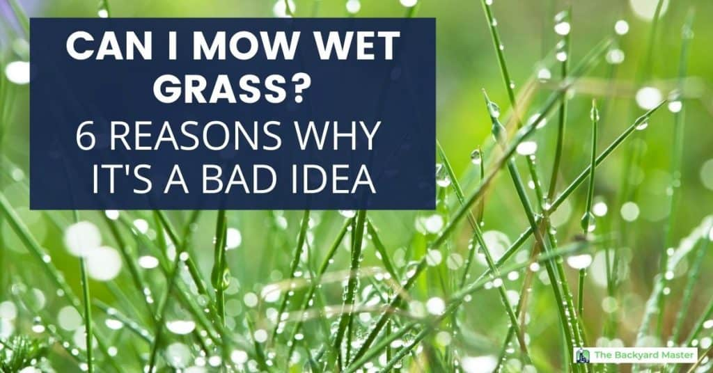Can I mow wet grass?