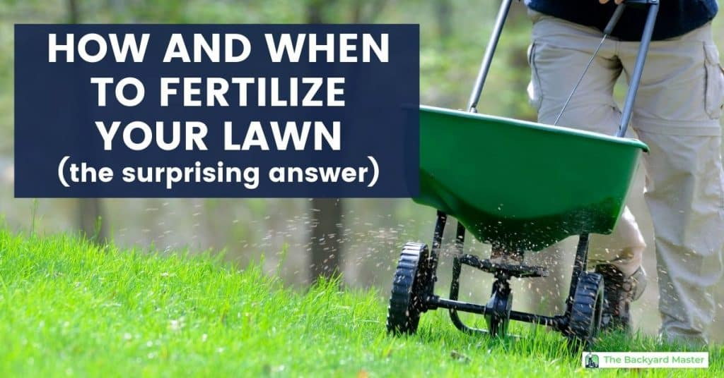 How and When To Fertilize Your Lawn