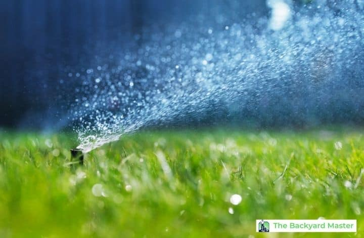 Close up image of a sprinkler watering a bermuda grass lawn.
