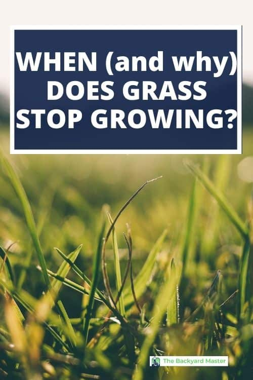 When will grass stop growing?