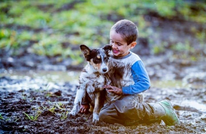 Boy and dog playing in backyard mud pit
