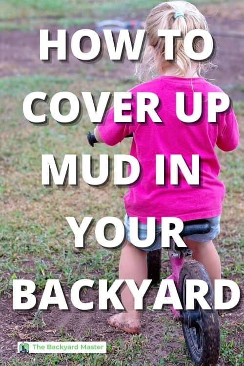 How to cover up mud in backyard