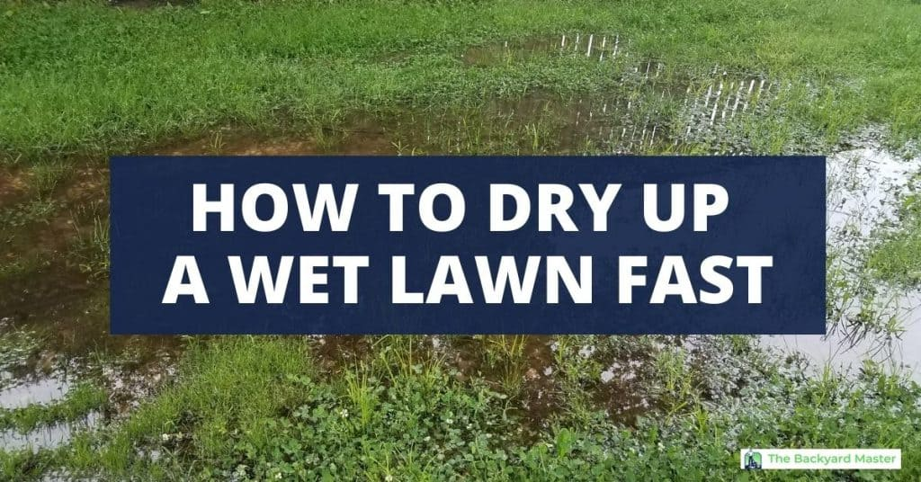 How to dry up a wet lawn fast