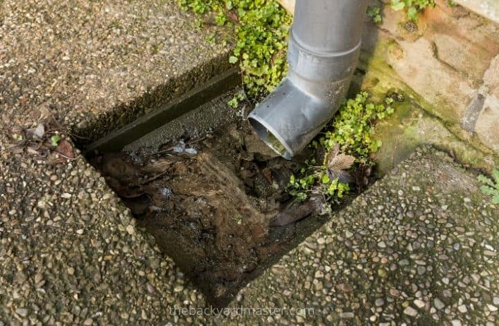 Blocked downspout near the home's foundation. Will cause flooding in the yard if not cleared before it rains.