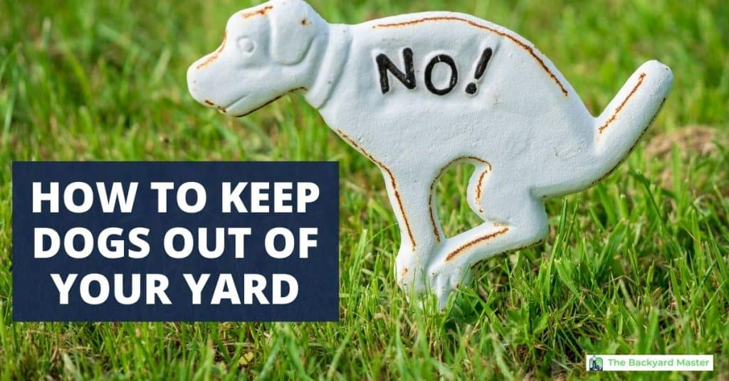 How to keep dogs out of your yard.