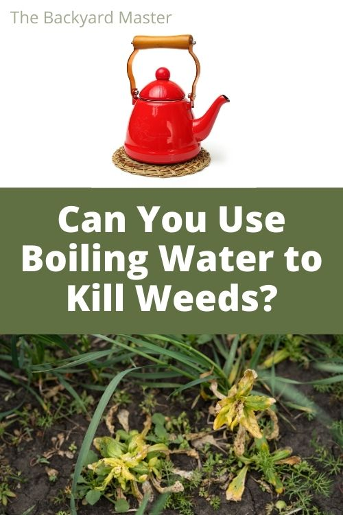 Boiling water method to kill weeds