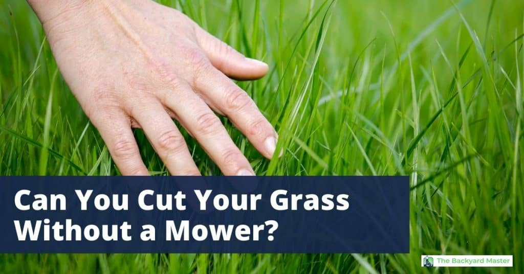 Can you cut grass without a mower?