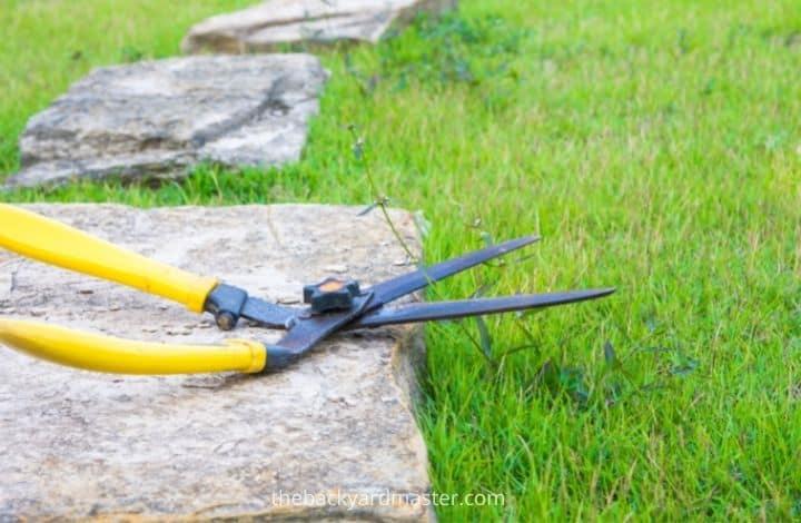 Garden shears to trim grass around pavers.