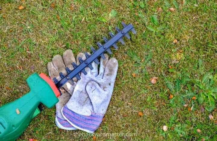 hedge trimmer on a lawn